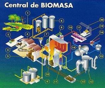 biomasa-transformación-energetica_thumb4