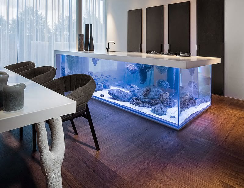 isla de cocina con acuario en su interior cocina con acuario