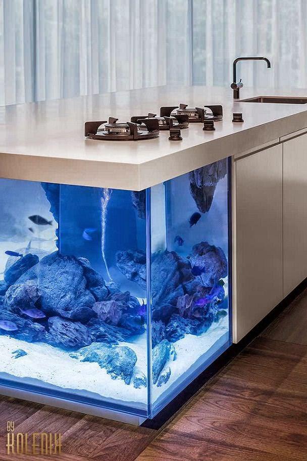 isla de cocina con acuario en su interior