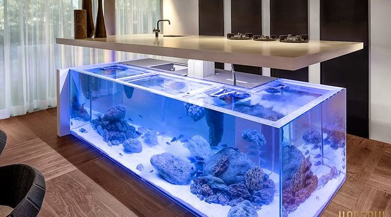Moderna isla de cocina con acuario en su interior Robert Kolenik