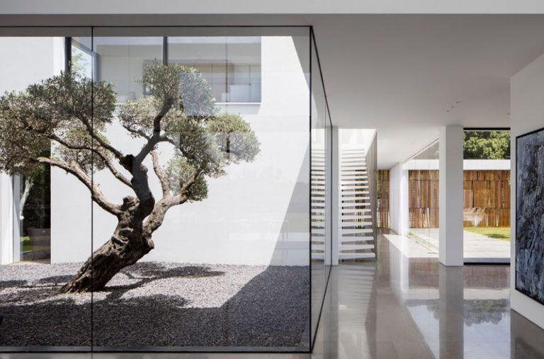 patio-minimalista-fachada
